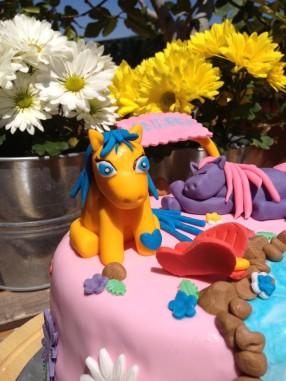 detalle Pony